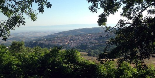 Italia2013orsaravista1blog