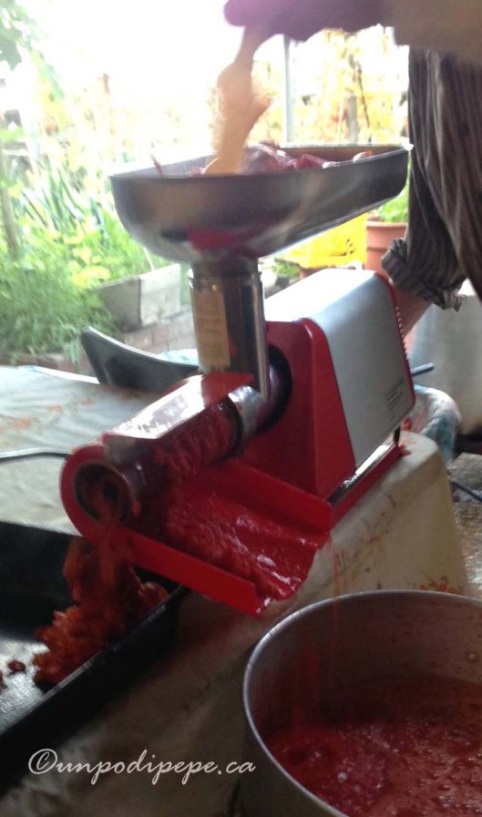 Our 'spremipomodoro' hard at work. The salsa/passata comes out the front and the skins and seeds come out the side.