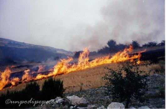 Bruciatura della ristoccia 1990