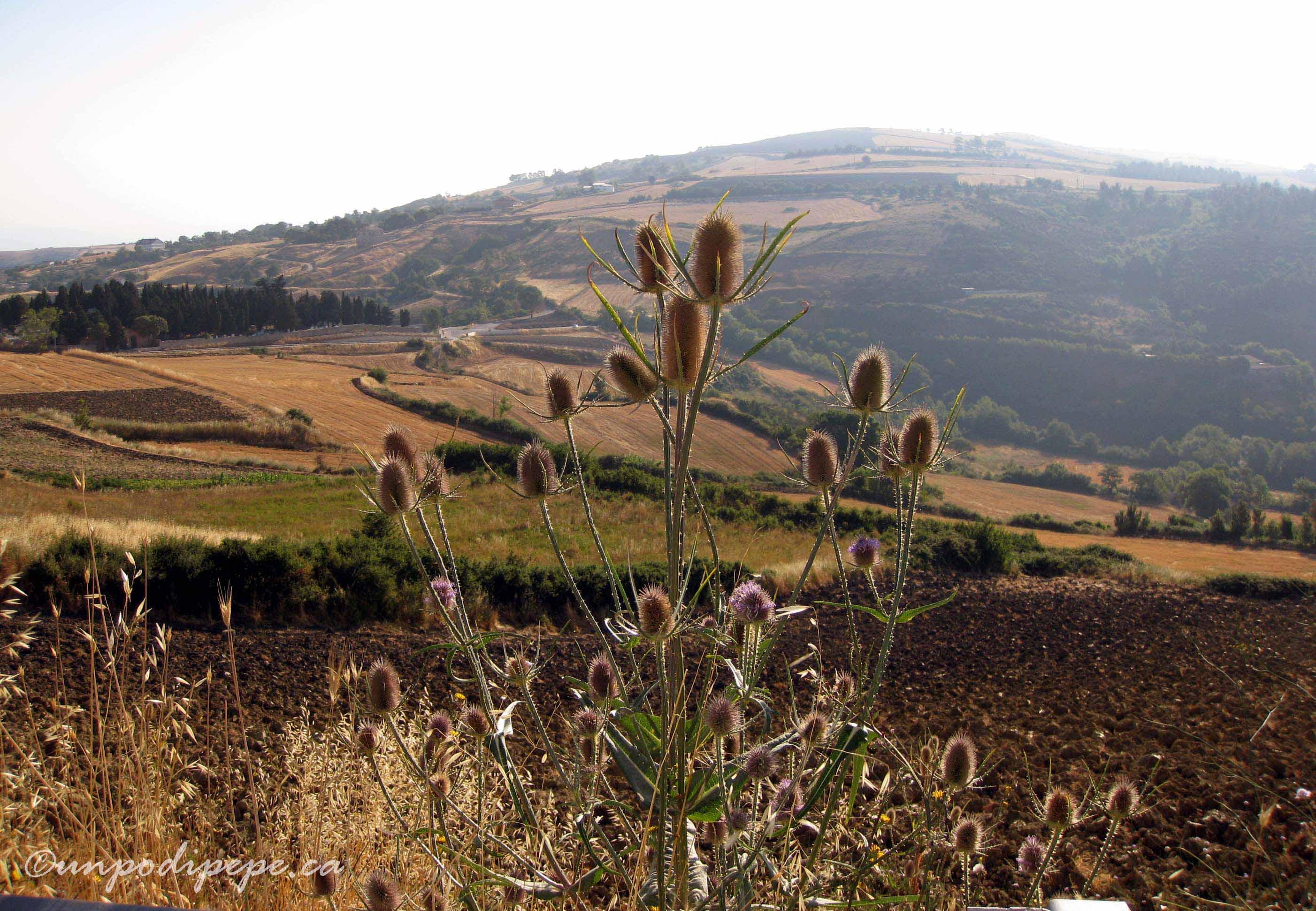 Montagna Spaccata1