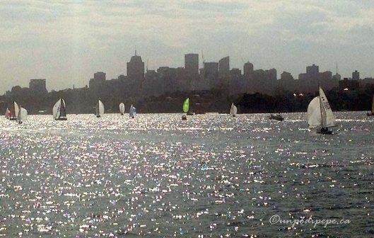 Sydneysailboats