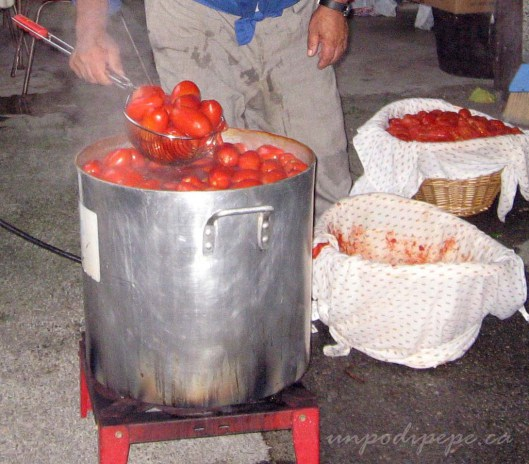 La pentola per i pomodori-a really big pot to cook the tomatoes!