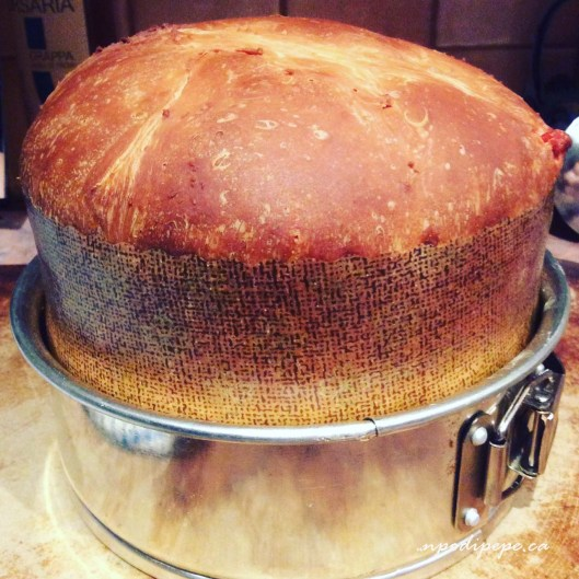 My first panettone fatto in casa