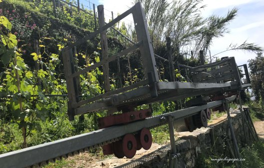 Vernazza machinery for transporting grapes