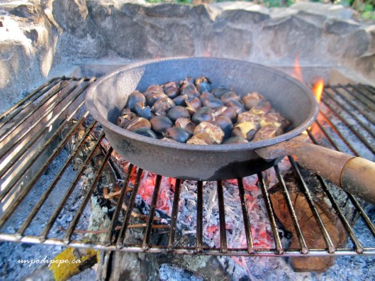 roasted chestnuts, castagne in campagna