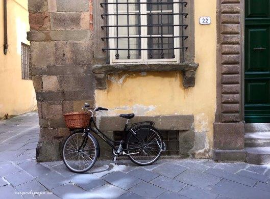 Lucca, bicicletta