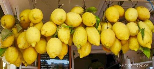 Limoni lemons Capri